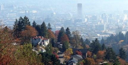 Portland 8