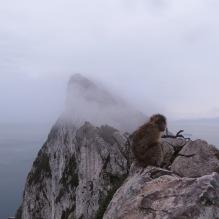 Gibraltar, United Kingtom 049
